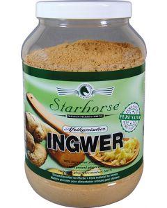 Ingwer www.starhorse.at