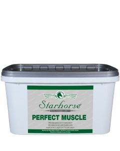 Perfect Muscle www.starhorse.at