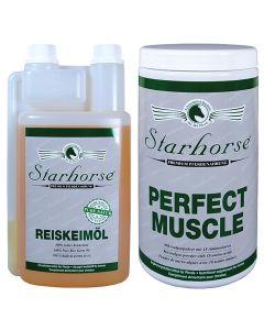 Vorteilspakete Muskelaufbau www.starhorse.at