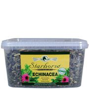 Echinacea www.starhorse.at
