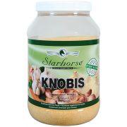 Knobis www.starhorse.at