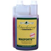 Magforte B12 www.starhorse.at