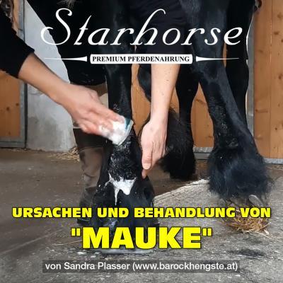 Mauke ...