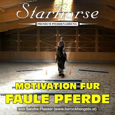 Motivation für ...