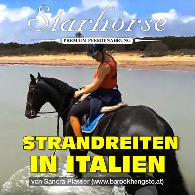 Urlaub mit Pferd ...